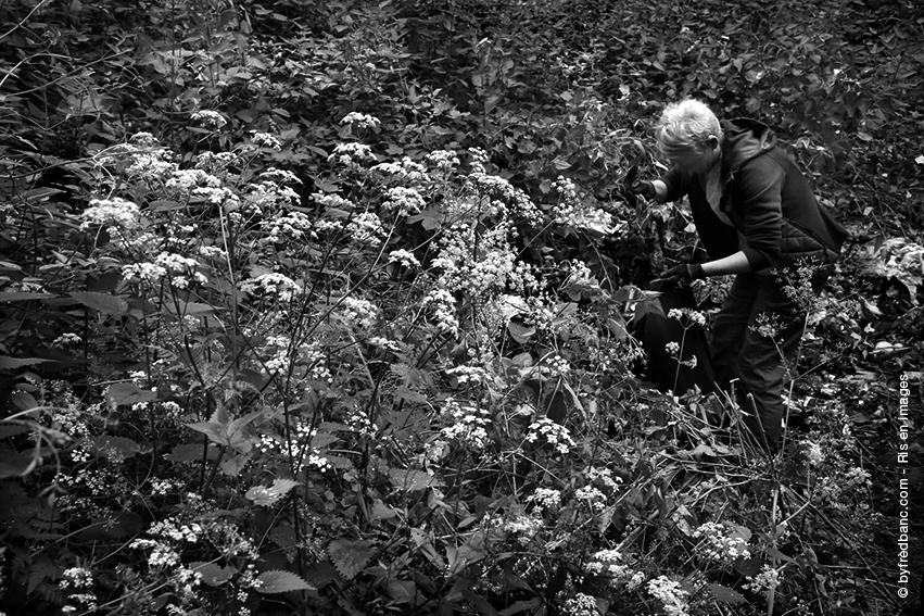 Essonne verte Essonne propre photos noir et blanc Ris Orangis en images Fred Blanc