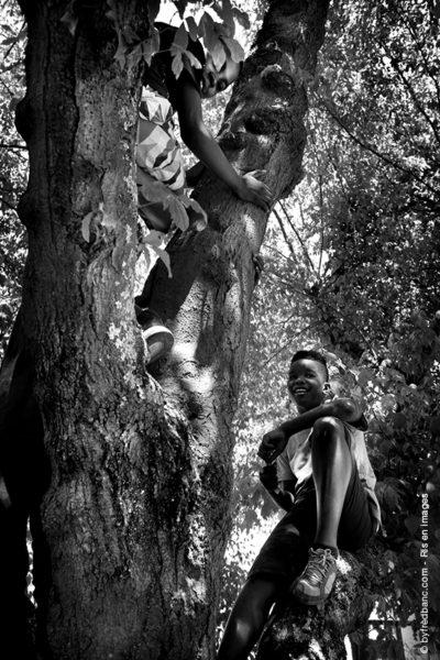 Dans le cadre de Ris en images, voici un reportage photo sur nos parcs forestiers et nos bords de Seine à Ris-Orangis